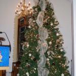 Zion, Chatt's, 12 foot tree.