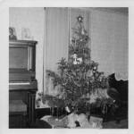 Carl Miller family Christmas tree (1951)
