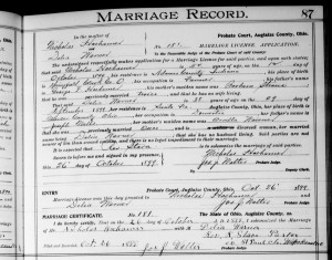 Nicholas Hoehamer marriage to Delia Warner, Auglaize County, Ohio, 1899.