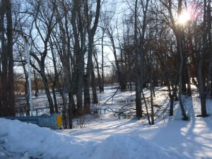 Where I believe Shinner's Mill once stood along the St. Marys River. (2014 photo by Karen)