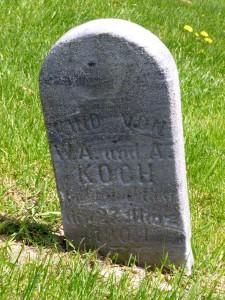 Child of W.A. & A. Koch, St. John's Cemetery, Pusheta Township, Auglaize County, Ohio. (2015 photo by Karen)