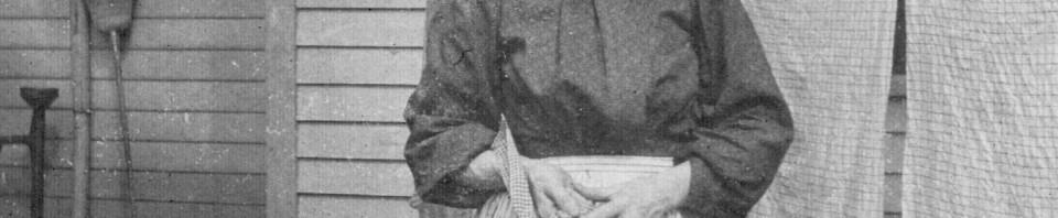 Amalia (Backhaus) Schumm (1859-1948). Photo taken about 1900.