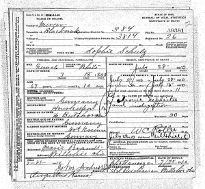 Sophie Schulz 1910 death certificate, FamilySearch.org.